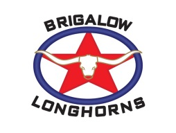 Brigalow Texas Longhorns